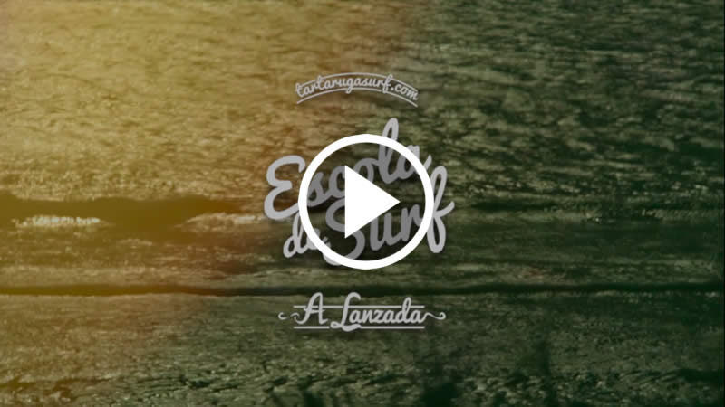 Tartaruga Escola de Surf